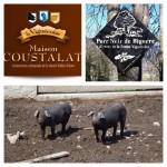 Maison Coustalat - élevage porc noir de Bigorre