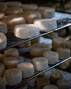Fromages Le Pitou