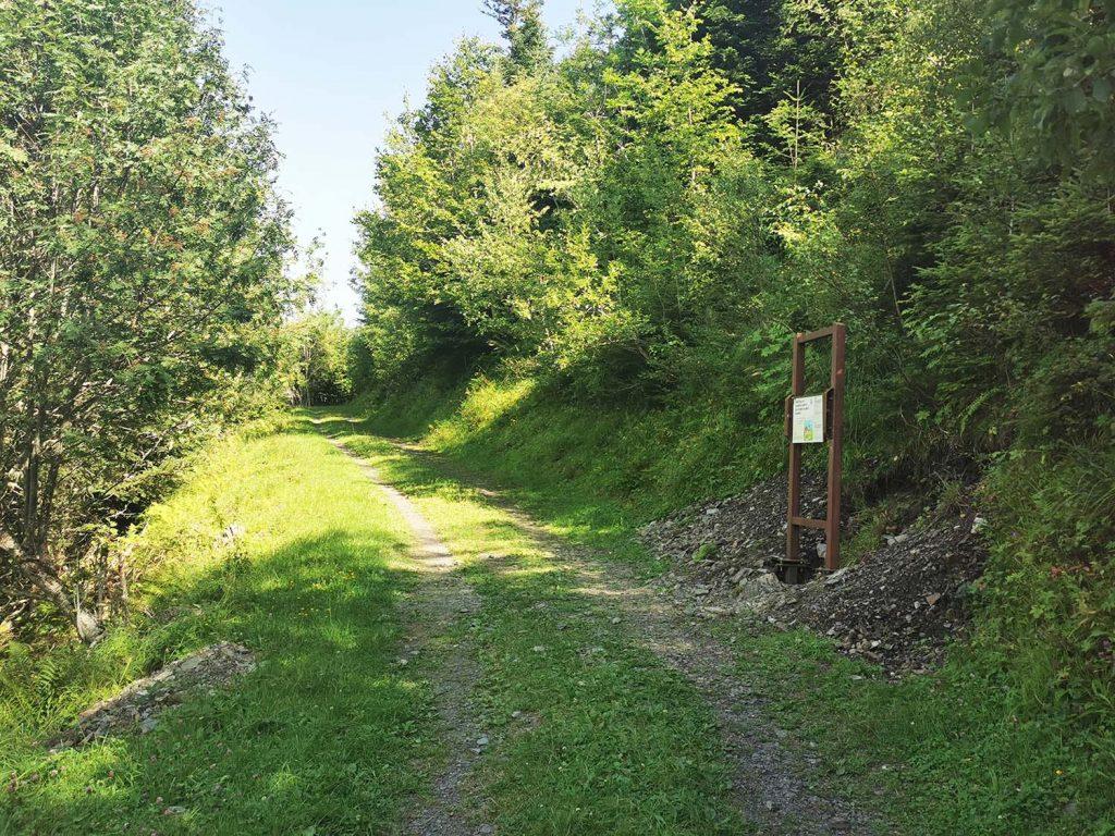 Illustration du sentier.