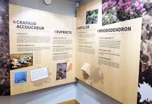 Panneau d'information sur la faune et la flore.